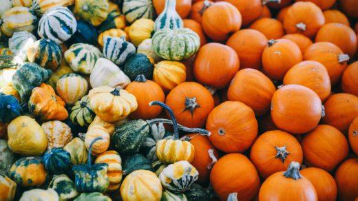 courges et potirons automne