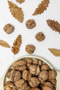 noix feuilles automne fruit