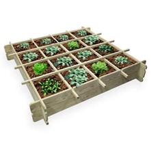 carré de jardin pour potager